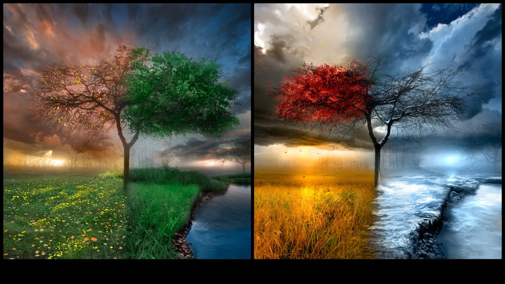 four seasons, for seasons in one picture, winter, summer, spring, autumn